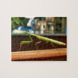 Praying Mantis Photo Puzzle with Gift Box