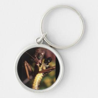 praying mantis Silver-Colored round key ring