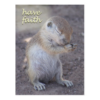 Praying Squirrel Post Card