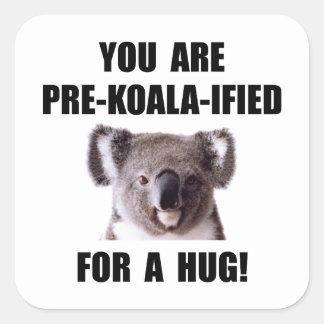 Pre Koala Qualified Hug Square Sticker