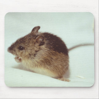 Prebles Meadow Jumping Mouse Mouse Pad