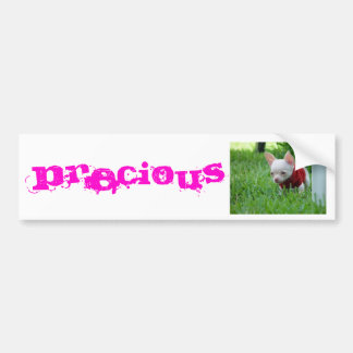 Preciious Chihuahua Bumper Sticker