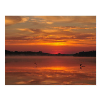 Precious morning, orange sunrise at the lake postcard