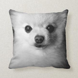 Precious Pomeranian Pillow