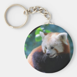 Precious Red Panda Bear Keychains