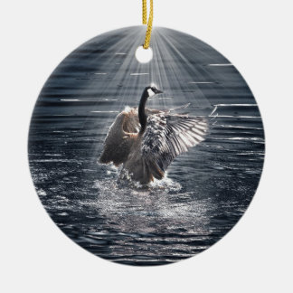 Preening, Flapping Canada Goose Photo Christmas Ornament