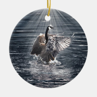 Preening, Flapping Wild Canada Goose Design Christmas Ornament