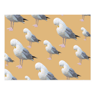 Preening Gull Pattern, Sketched Style on Tan. Postcard