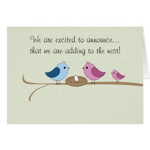 Pregnancy Announcement Filling the Nest Card