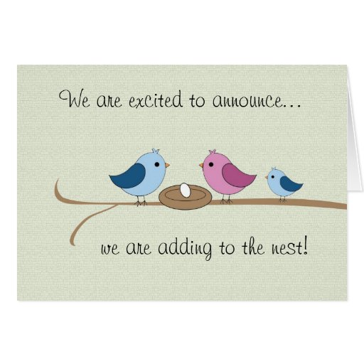 Pregnancy Announcement Filling the Nest Family Greeting Cards