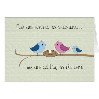 Pregnancy Announcement Filling the Nest Family Greeting Card