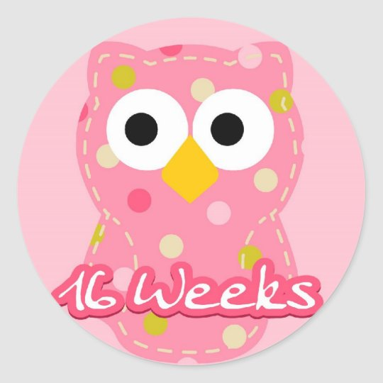 Pregnancy Sticker - Owl 16 Weeks
