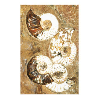 Prehistoric background with fossil shells stationery
