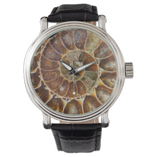 prehistoric fossil snail shell black animal nature wrist watches