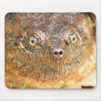 Prehistoric Mouse Pad