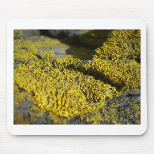 Prehistoric yellow lichen on beach rock 1 mousemat