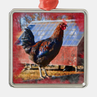 Premium Metal Ornament with Rooster in barnyard