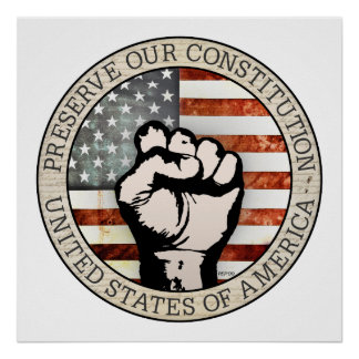 Preserve Our Constitution Poster