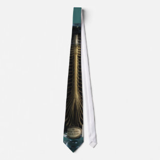 Preserved Spine Tie