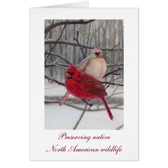 Preserving Wildlife Holiday Card