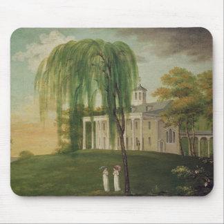 President George Washington Mouse Pad