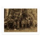 President Roosevelt and John Muir Beneath (Sepia) Postcard