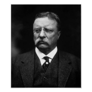 President Teddy Roosevelt Posters