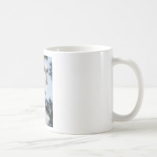 President Washington Coffee Mugs