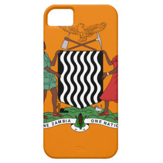 Presidential flag of Zambia Barely There iPhone 5 Case
