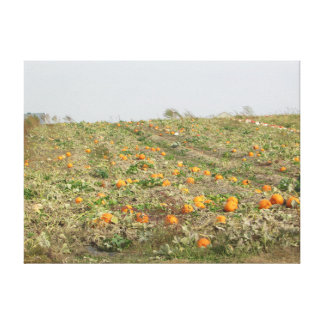 Pretty Amish Pumpkin Farm in the Midwest Country Canvas Print