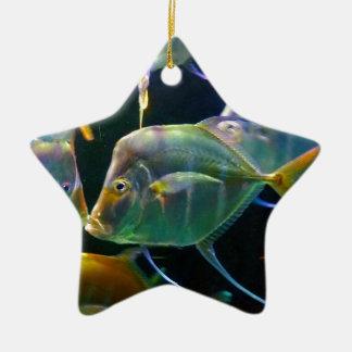 Pretty Aquatic Up Close School Of Fish Ceramic Star Decoration
