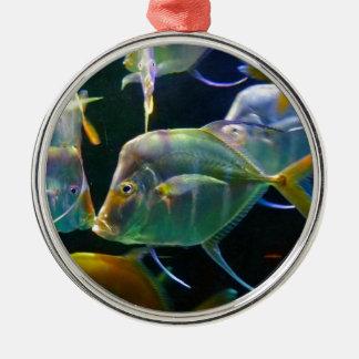 Pretty Aquatic Up Close School Of Fish Christmas Ornament