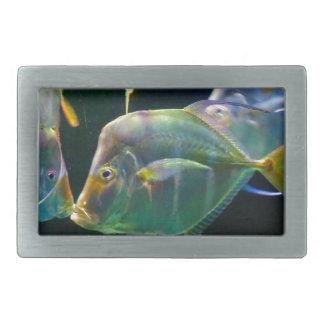 Pretty Aquatic Up Close School Of Fish Rectangular Belt Buckles