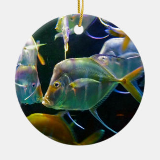 Pretty Aquatic Up Close School Of Fish Round Ceramic Decoration