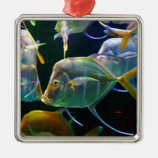 Pretty Aquatic Up Close School Of Fish Silver-Colored Square Decoration