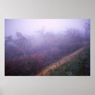 Pretty Autumn Landscape Shenandoah National Park Poster