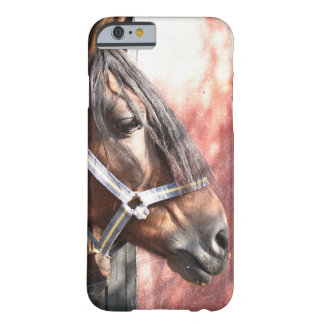 Pretty Bay Horse in a Sunlit Stable Barely There iPhone 6 Case
