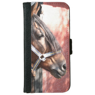 Pretty Bay Horse in a Sunlit Stable iPhone 6 Wallet Case