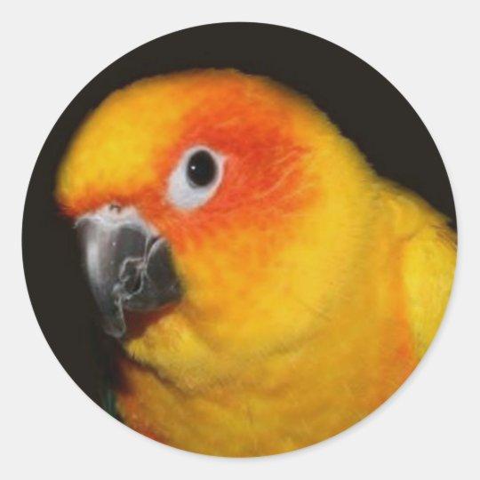 Pretty Bird Sticker