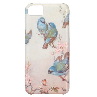 Pretty Birds iPhone 5C Case