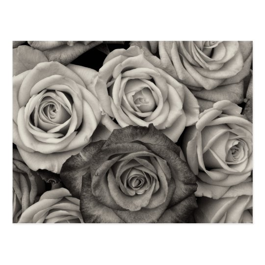 Pretty Black and White Roses Bouquet of Flowers