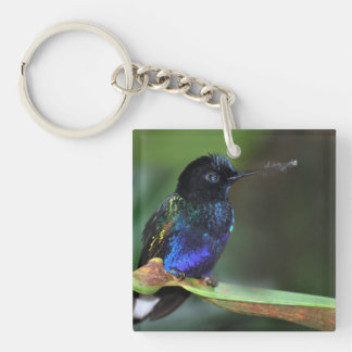 Pretty Black, Blue and Green Hummingbird Double-Sided Square Acrylic Key Ring