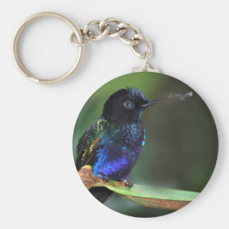 Pretty Black, Blue and Green Hummingbird Basic Round Button Key Ring