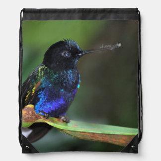 Pretty Black, Blue and Green Hummingbird Drawstring Backpack