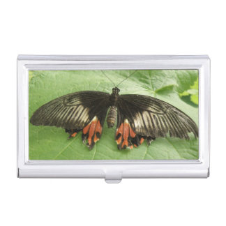 Pretty Black Red and Gold Butterfly Card holder