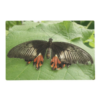 Pretty Black Red and Gold Butterfly Custom Laminated Place Mat