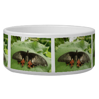 Pretty Black Red and Gold Butterfly Dog Bowl
