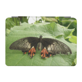 Pretty Black Red and Gold Butterfly iPad Mini iPad Mini Cover