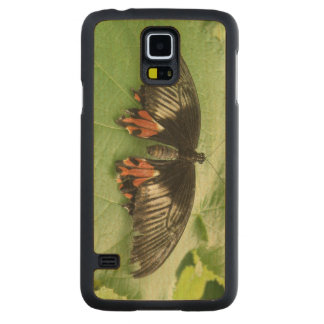 Pretty Black Red and Gold Butterfly Wooden Carved Maple Galaxy S5 Case