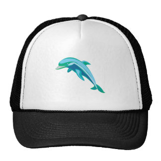 pretty blue and green dolphin cap